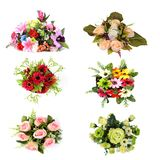 Raccolta del fiore isolata Immagine Stock