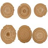 Raccolta del fondo degli albero-anelli Immagine Stock