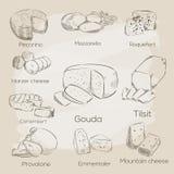 Raccolta del formaggio Illustrazione disegnata a mano di vettore dei tipi del formaggio Fotografia Stock