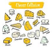 Raccolta del formaggio Vector l'illustrazione dei tipi a disposizione stile disegnato del formaggio Formaggio isolato su bianco illustrazione vettoriale
