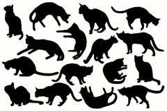 Raccolta del gatto - siluetta di vettore Fotografia Stock