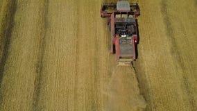 Raccolta del giacimento di grano stock footage