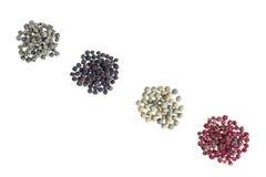 Raccolta del granello di pepe bianca, verde, rosso, nero, bianco del icroppedon Fotografia Stock Libera da Diritti