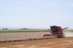 Raccolta del grano Fotografie Stock