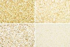 Raccolta del grano fotografia stock libera da diritti