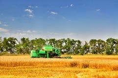 Raccolta del grano fotografia stock