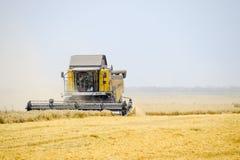 Raccolta del grano con una mietitrebbiatrice Fotografie Stock