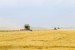 Raccolta del grano con una mietitrebbiatrice Immagine Stock