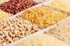 Raccolta del grano dei chicchi come fondo, primo piano Fotografie Stock