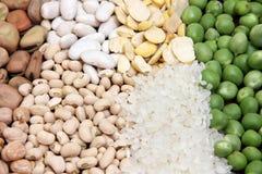 Raccolta del legume Fotografia Stock Libera da Diritti