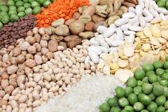 Raccolta del legume Fotografie Stock
