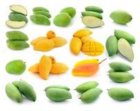 Raccolta del mango isolata su un bianco Fotografia Stock