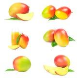 Raccolta del mango rosso isolata su bianco Immagine Stock Libera da Diritti