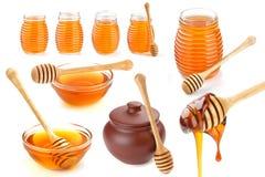 Raccolta del miele isolata su fondo bianco Immagine Stock Libera da Diritti