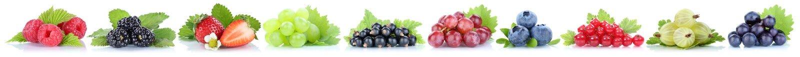 Raccolta del orga della bacca dei mirtilli delle fragole dell'uva delle bacche Fotografia Stock Libera da Diritti