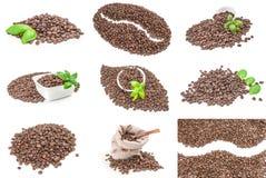 Raccolta del primo piano dei chicchi di caffè isolati sopra un fondo bianco Immagine Stock Libera da Diritti