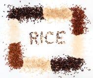 Raccolta del riso su fondo bianco fotografie stock libere da diritti
