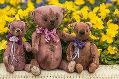 Raccolta del ` s dell'orsacchiotto Foto Immagine Stock