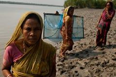 Raccolta del seme del gamberetto in Sunderban Fotografia Stock Libera da Diritti