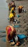 Raccolta del seme del gamberetto in Sunderban Fotografie Stock Libere da Diritti