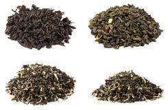 Raccolta del tè isolata su fondo bianco Fotografia Stock Libera da Diritti