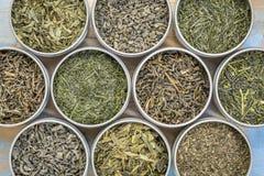 Raccolta del tè verde dell'a fogli staccabili Immagine Stock