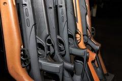 Raccolta dell'arsenale del fucile da caccia di Beretta Fotografia Stock Libera da Diritti