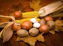 Raccolta dell'autunno immagine stock