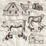 Raccolta dell'azienda agricola Elementi isolati disegnati a mano Immagini Stock Libere da Diritti