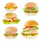 Hamburger della miscela Immagini Stock Libere da Diritti