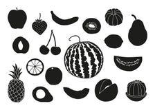 Raccolta dell'icona della frutta Illustrazione Vettoriale
