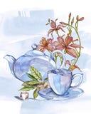 Raccolta dell'illustrazione disegnata a mano sul tè di tema insieme dell'acquerello Disegno del menu Immagini Stock Libere da Diritti