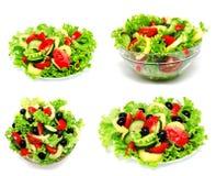 Raccolta dell'insalata della verdura fresca delle foto isolata Immagine Stock