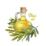 Raccolta dell'oliva dell'acquerello Immagine Stock Libera da Diritti
