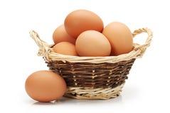 Raccolta dell'uovo Fotografia Stock Libera da Diritti