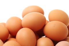 Raccolta dell'uovo Fotografie Stock Libere da Diritti