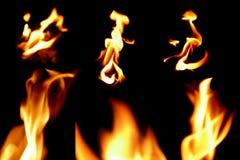 Raccolta della fiamma del fuoco Fotografia Stock Libera da Diritti