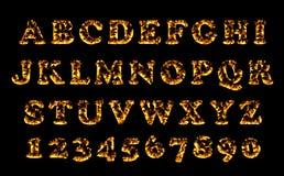 Raccolta della fonte del fuoco, alfabeto della fiamma Immagine Stock Libera da Diritti