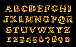 Raccolta della fonte del fuoco, alfabeto della fiamma Lettere brucianti del fuoco messe Immagini Stock