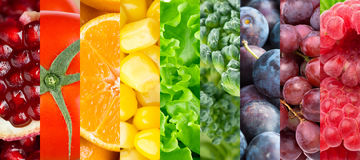 Raccolta della frutta, delle bacche e delle verdure differenti Fotografia Stock Libera da Diritti