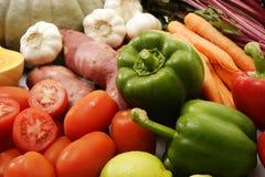 Raccolta della frutta e della verdura Immagine Stock