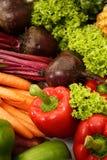 Raccolta della frutta e della verdura Immagine Stock Libera da Diritti