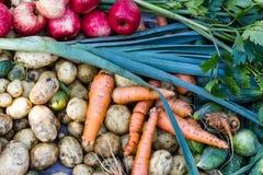 Raccolta della frutta e delle verdure appena raccolte Immagini Stock