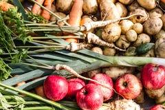 Raccolta della frutta e delle verdure appena raccolte Fotografia Stock