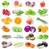 Raccolta della frutta e delle verdure isolate su fondo bianco Fotografia Stock