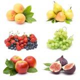Raccolta della frutta fresca Fotografie Stock Libere da Diritti