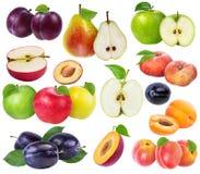 Raccolta della frutta fresca isolata Fotografia Stock Libera da Diritti