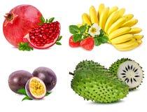 Raccolta della frutta fresca isolata su bianco Immagini Stock Libere da Diritti