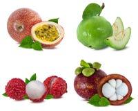 Raccolta della frutta fresca isolata su bianco Fotografie Stock Libere da Diritti