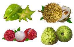 Raccolta della frutta fresca isolata su bianco Immagini Stock
